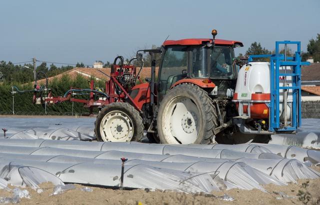 #Bretagne : L'arrêté anti-#pesticides du maire de #Langouët devant la #justice 640x4365