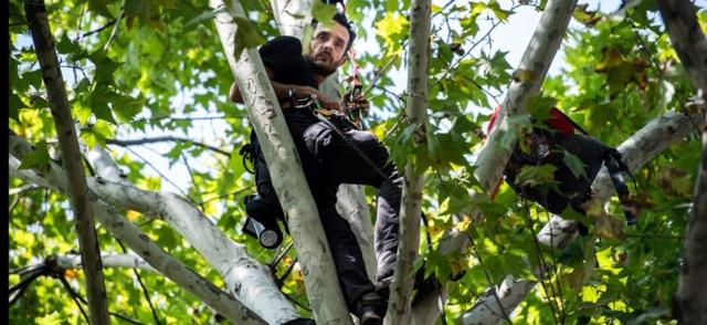 Perché dans un #arbre depuis 4 jours face au #Ministère de la #TransitionÉcologique 661_ma83