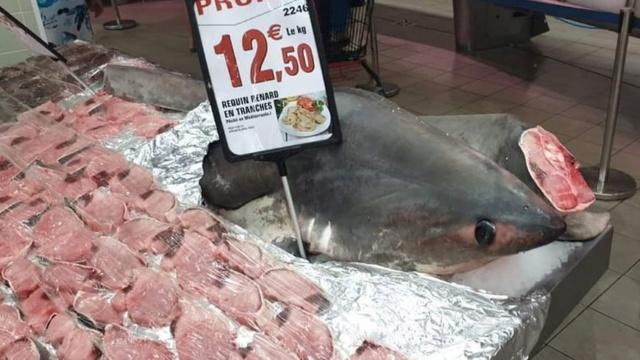 Du #requin interdit à la #pêche vendu en #promo par l'#Intermarché d'#Argelès 870x4854