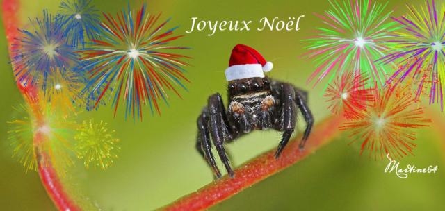 joyeux Noel Noel_a10