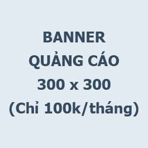 Banner 300x300