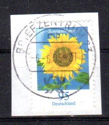 Stefan Klein und Olaf Neumann 243510