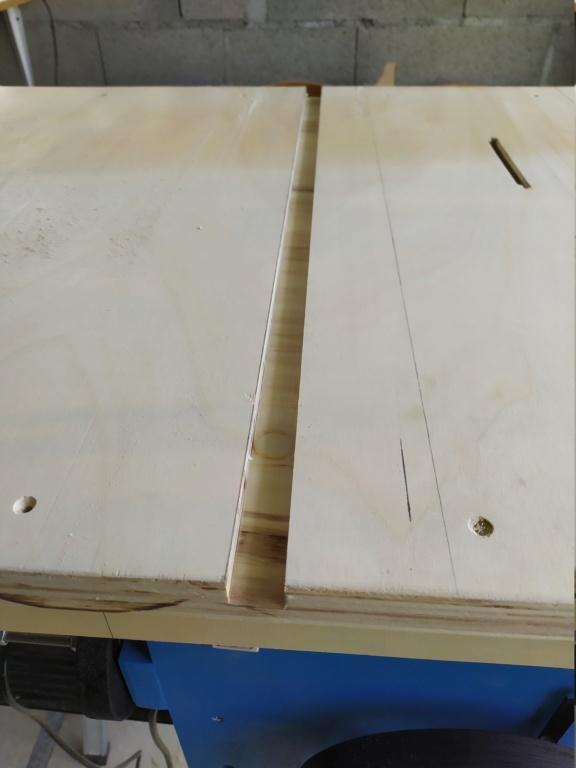 Mon projet de scie sous table - Page 4 Img_2119