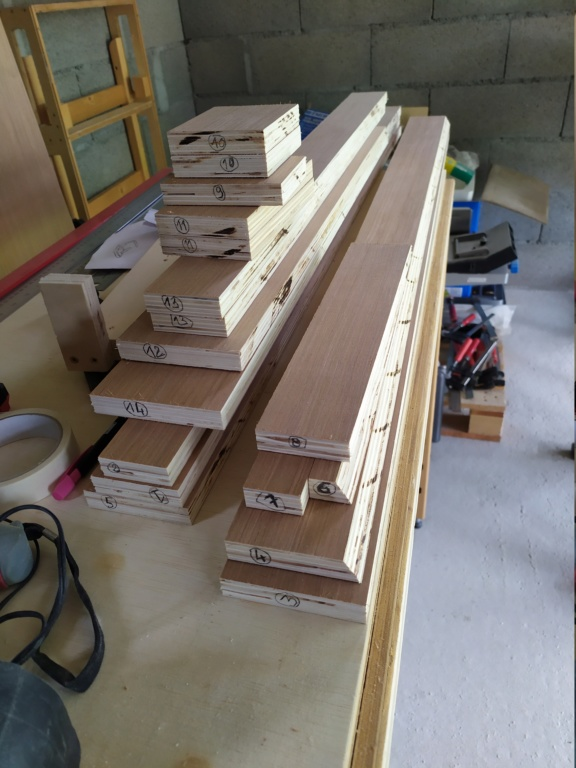 Mon projet de scie sous table - Page 4 Img_2151