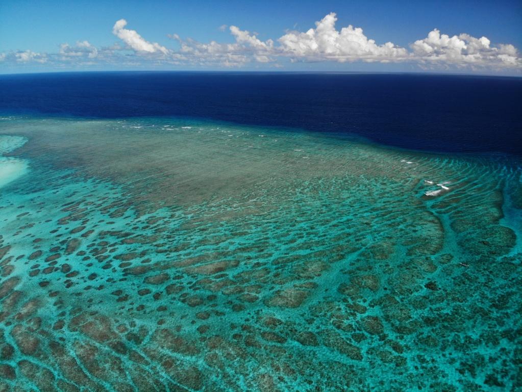 Îlot de sabl blanc Mayotte Fd932510