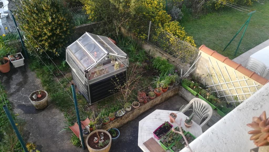 Le nouveau jardin de Digitaline  Img_1096