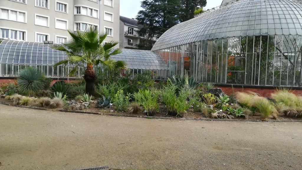 Les succulentes du jardin botanique de Nantes  Img_2672
