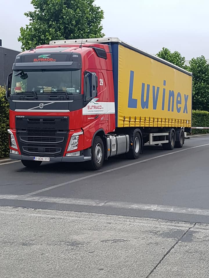 Luvinex (groupe Eutraco)(Aalter) - Page 2 36279810