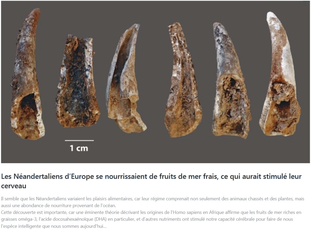 Des dizaines d'empreintes fossilisées de Néandertaliens découvertes sur une plage en Espagne ! By Gurumed.org Capt2042