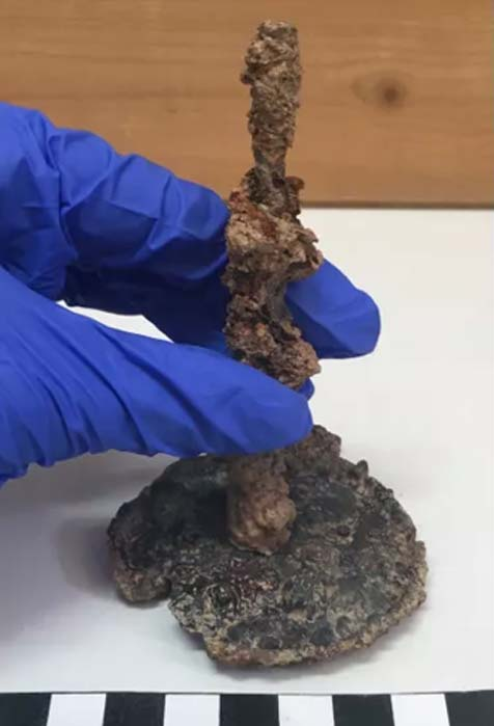 Pot «  magique  » contenant du poulet démembré utilisé comme malédiction dans l'Athènes antique (diaporama et vidéo) By Jack35 Capt2097