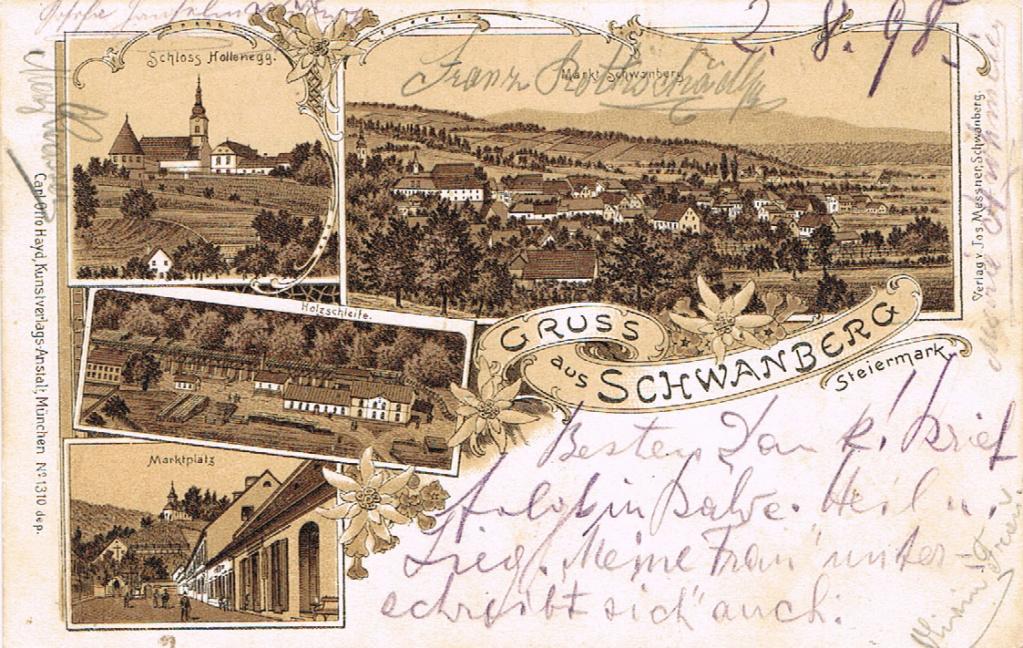 Schwanberg Schwan10