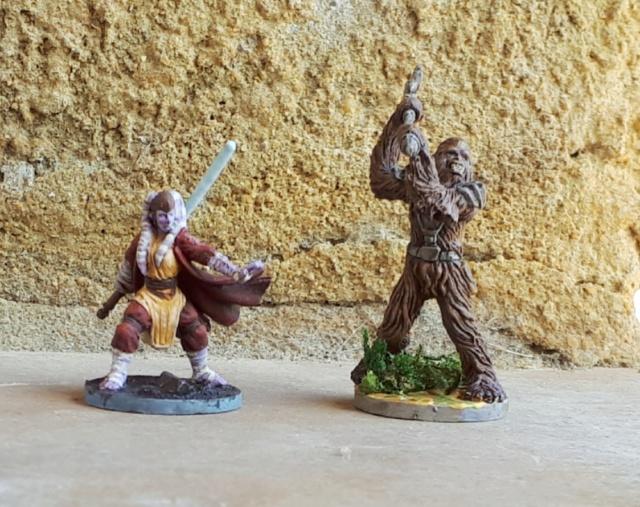 Figurines peintes divers jeux 20200423