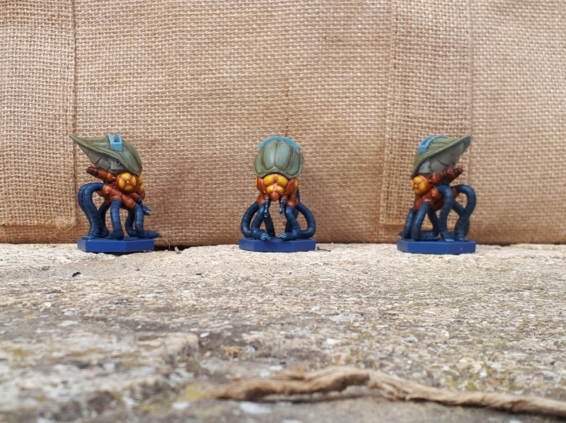 Figurines peintes divers jeux Anachr13