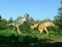 обзор тираннозавр и трицератопс 1:35 от TAMIA №60203 и №60201  Park-d10