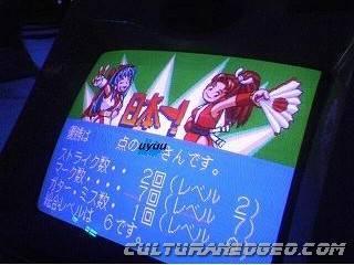 Hardware des Neo Geo Bowl 410