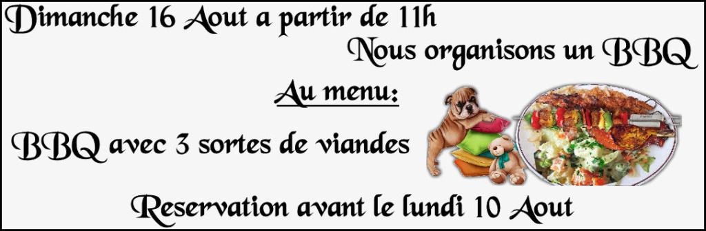 Club Canin des Amis de Tubize - Portail 16_aou10