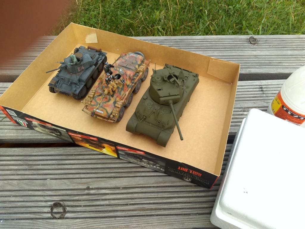 Pz.Kpfw. 38(t) Ausf. F - Page 4 Img_2453
