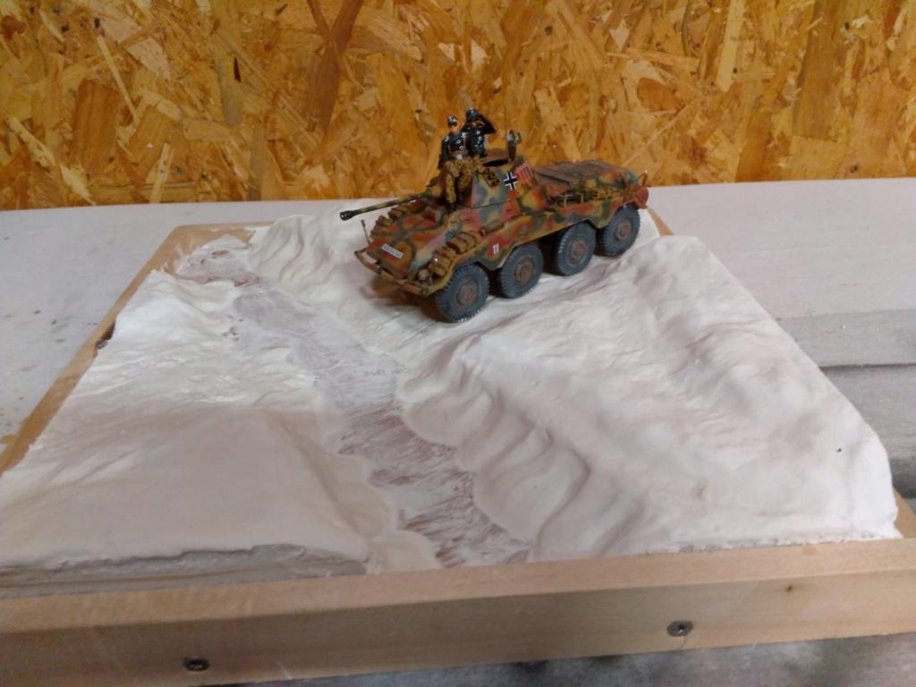 Diorama Sd.Kfz 234/2 Puma Img_2537