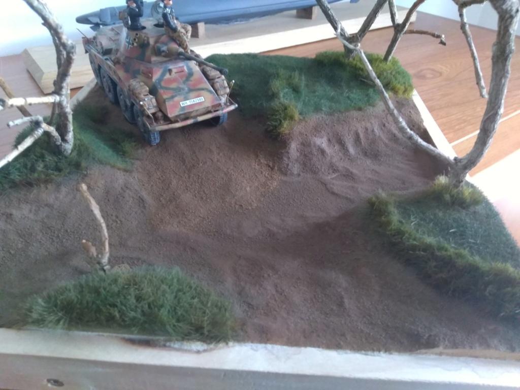 Diorama Sd.Kfz 234/2 Puma Img_2561