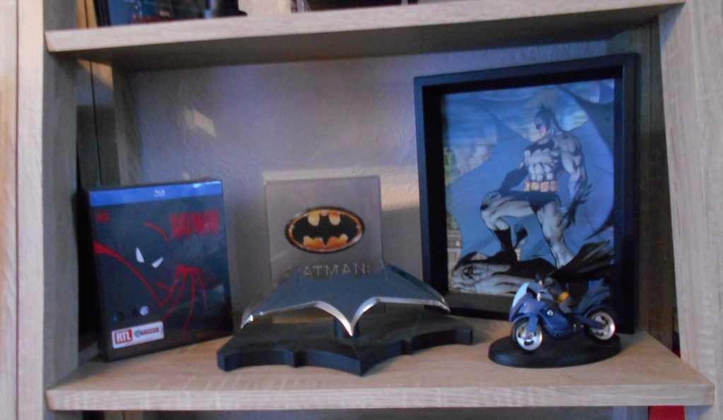voitures de collection Batman Eaglemoss + blu ray steelbooks et autres collectors - Page 6 Dscn0026