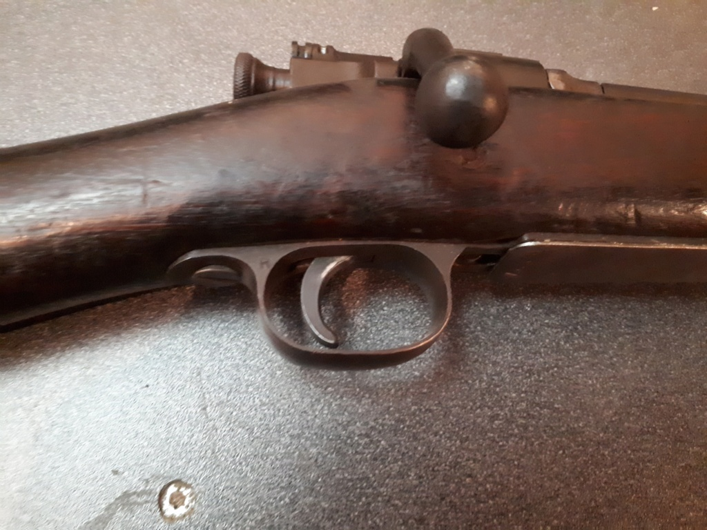 Springfield Remington1903 20201017