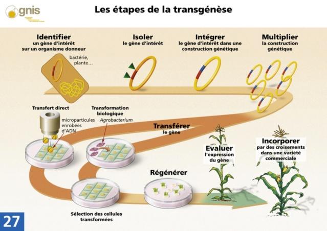 Va-t-on mourir à cause de notre PROPRE alimentation ? Biotec12