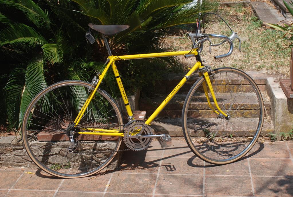 Motoconfort spécial sport / jaune colsa Dsc_1812