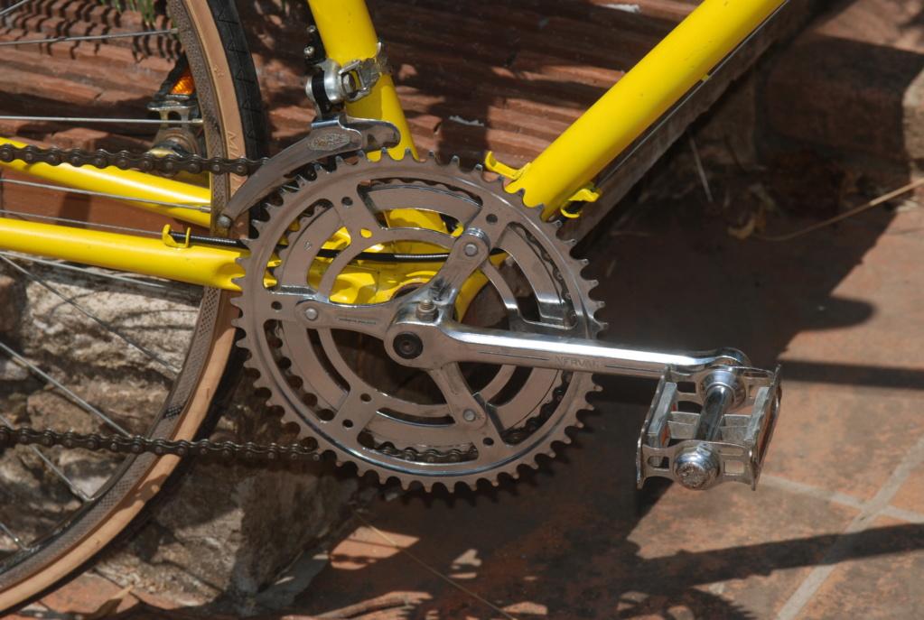 Motoconfort spécial sport / jaune colsa Dsc_1813