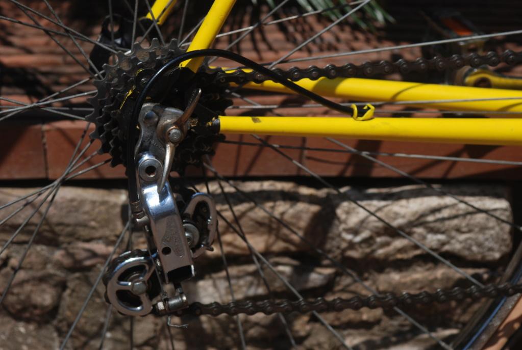 Motoconfort spécial sport / jaune colsa Dsc_1814