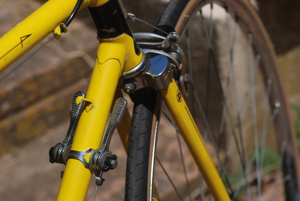 Motoconfort spécial sport / jaune colsa Dsc_1929