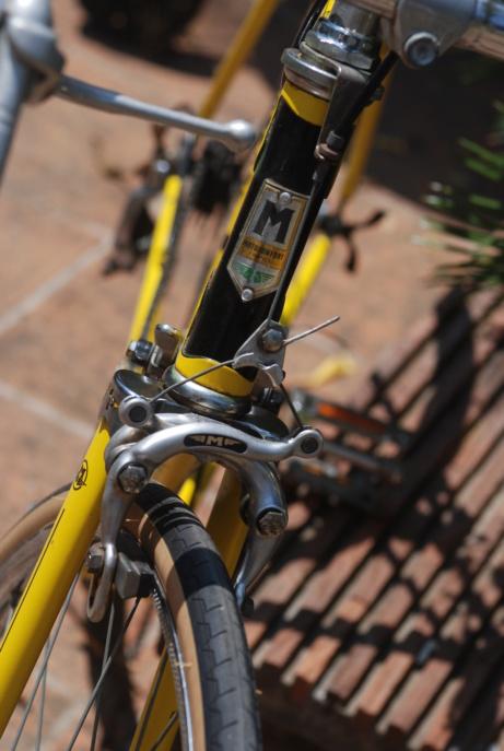 Motoconfort spécial sport / jaune colsa Dsc_1930