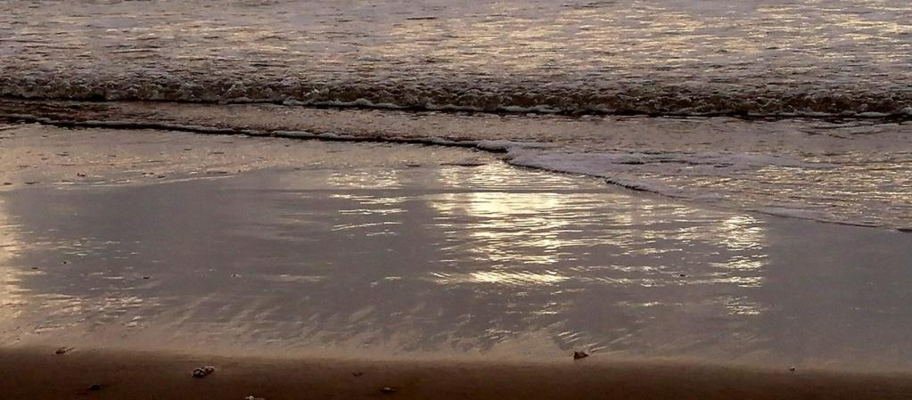 Des reflets à Saint Georges de Didonne Img_2047