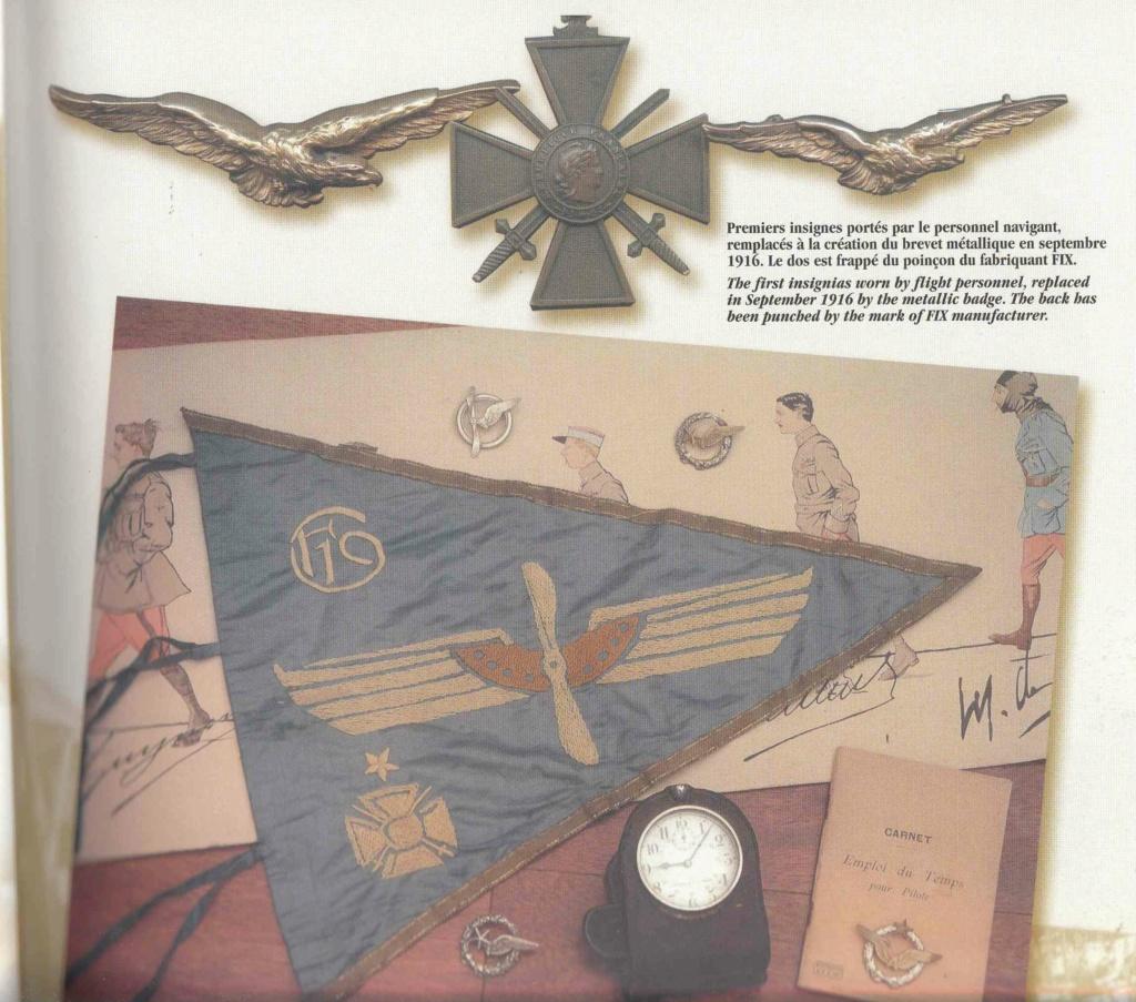 Aviation, brevet pilote FNFL, épervier et autres... 20200810