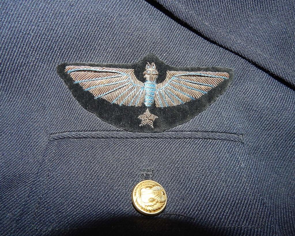 Confirmation et datation ailes de poitrine Ingeni10