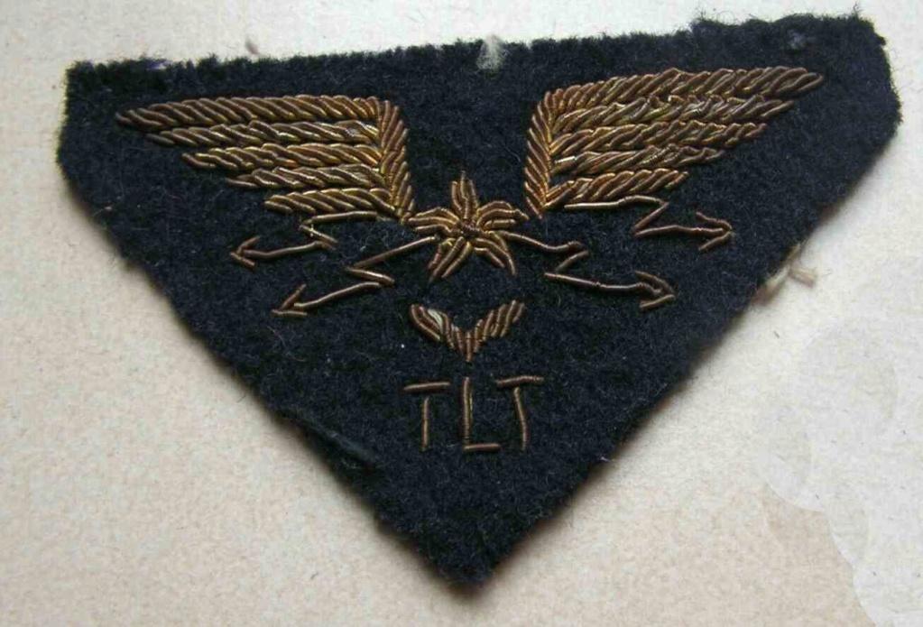 Insigne Armée de l'Air, inscription TLT Insign14