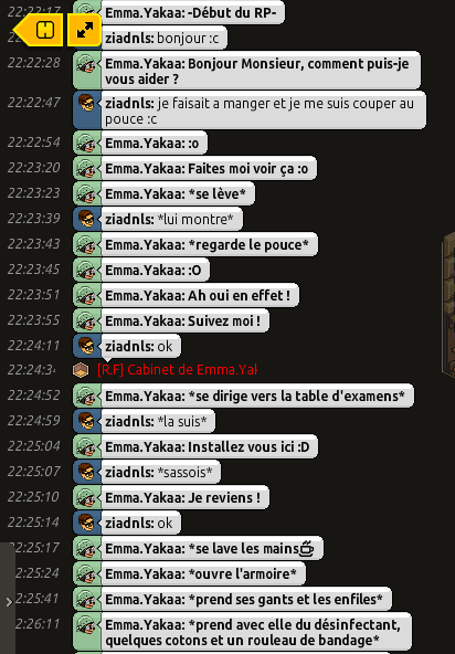 [CHU] Rapports D'actions RP de Emma.Yakaa Amrr_110