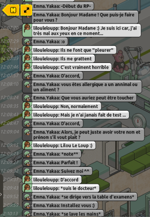 [CHU] Rapports D'actions RP de Emma.Yakaa Lilou_10