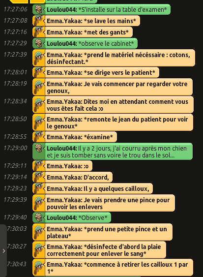 [CHU] Rapports D'actions RP de Emma.Yakaa Loulou11