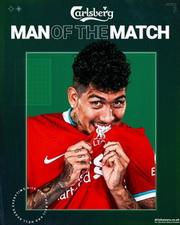 Maik und die Reds aus Liverpool - Statistik 13189412