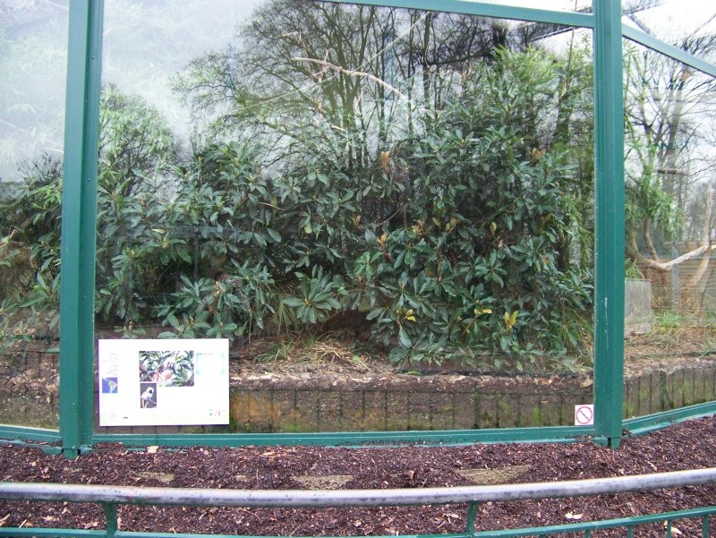 Le zoo de la tete d'or (Lyon) 100_0719