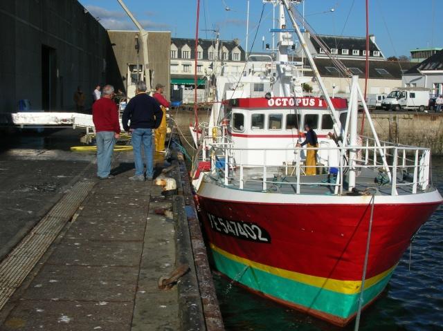 [VIE DES PORTS] Quelques bateaux de pêche (sur nos côtes Françaises) - Page 3 Dscn4511