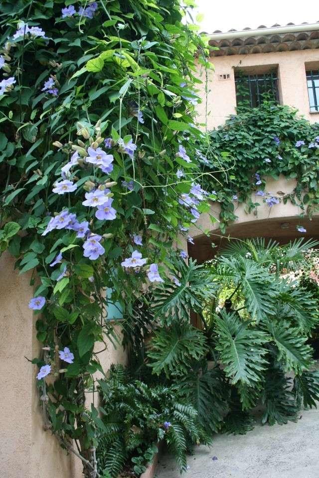 Visite d'un jardin extraordinaire Entree10