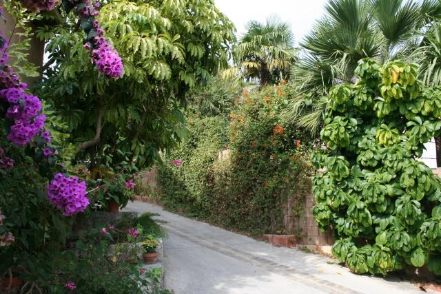Visite d'un jardin extraordinaire Pres_d11