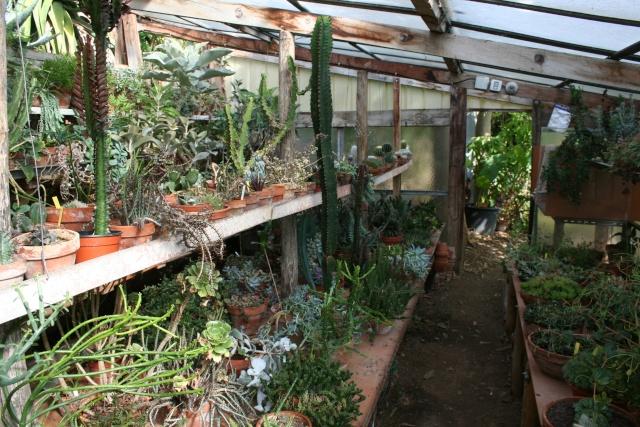 Visite d'un jardin extraordinaire Serre_10
