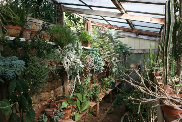 Visite d'un jardin extraordinaire Serre_11