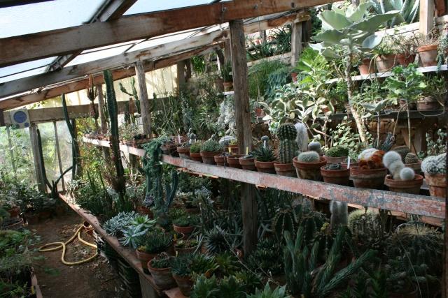 Visite d'un jardin extraordinaire Serre_12