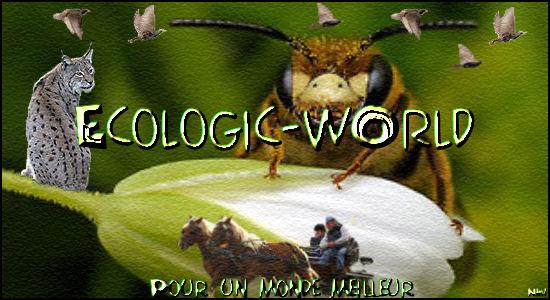 ¤ Ecologic & ZanimOs  World... ¤