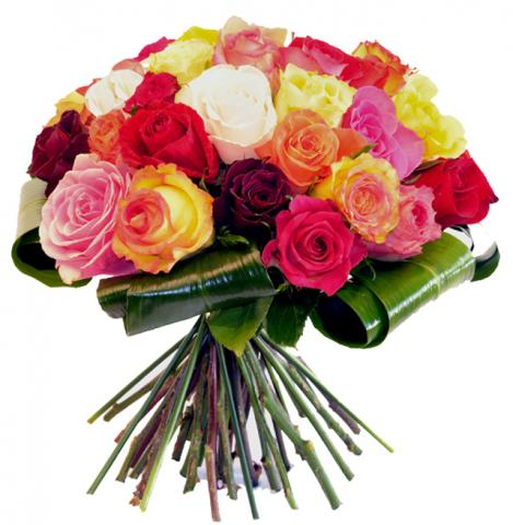 Joyeux anniversaire Chanchan 12375610