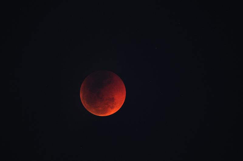15 juin 2011 , éclipse totale de lune Nik_9913
