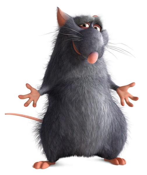 Ratatouille 6y01u110